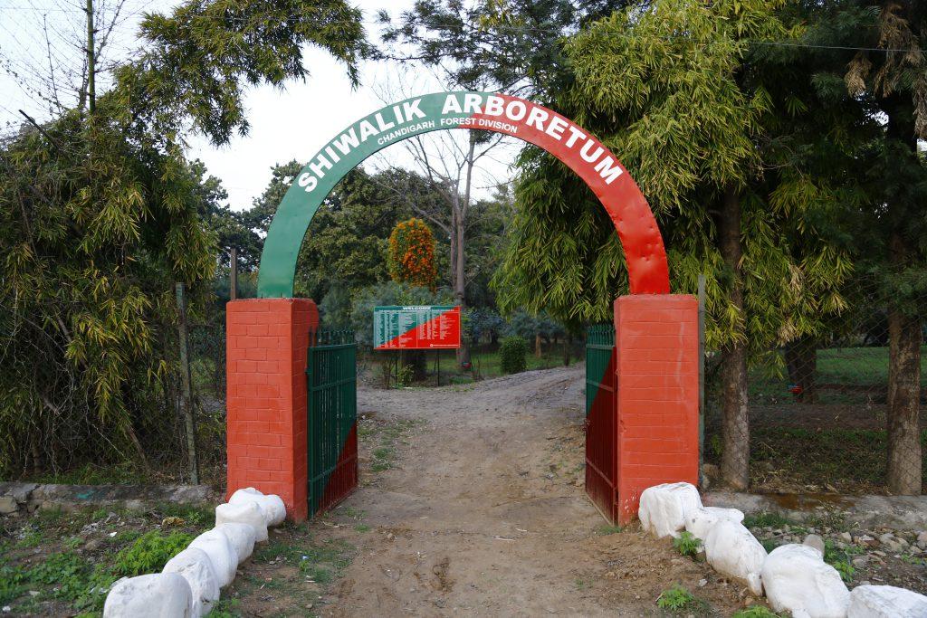 Shivalik Arboretum